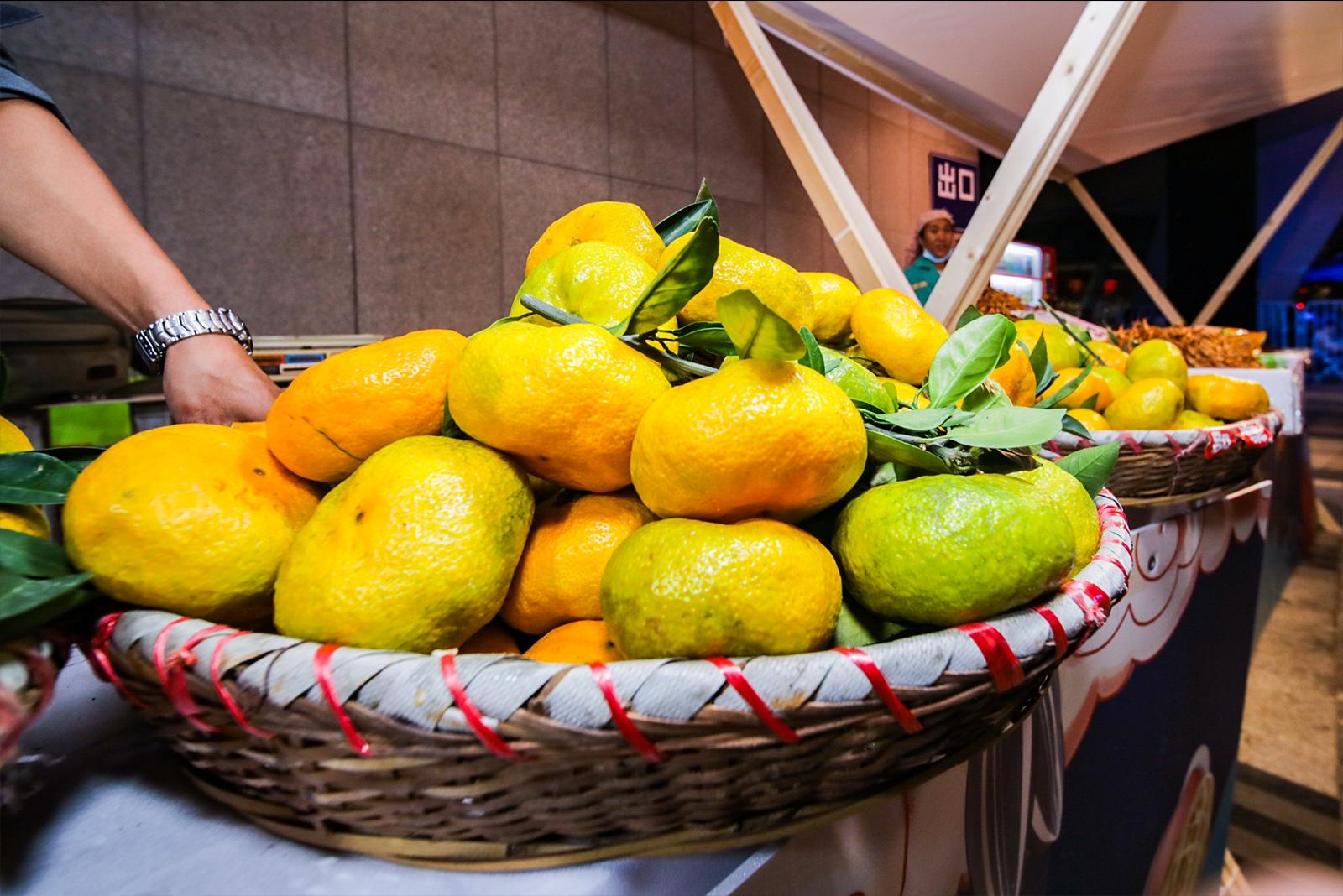 丰收的柑橘